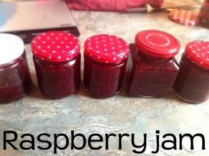 raspberry jam 2 header